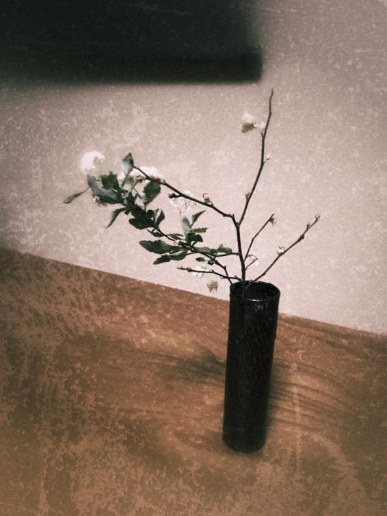 Ikebana: arreglo floral. Cortesía @pauleonbravo
